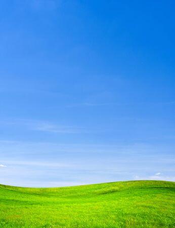 青空: 緑の草原、青い空