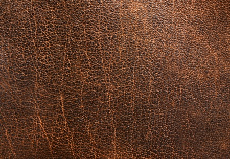 leather texture: Leather texture
