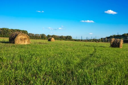 haystack lying among the green field and blue sky.
