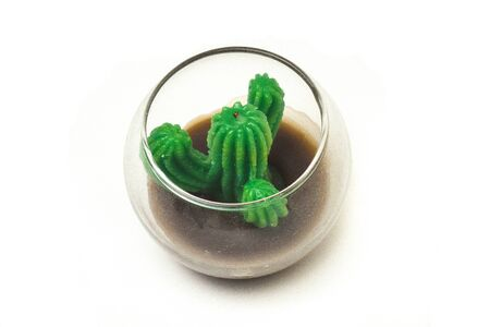 Green Cactus candle detais with white background.