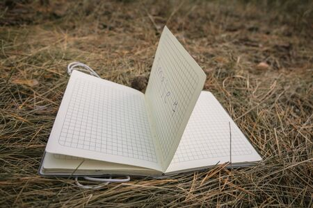 Open book, fanned pages on grass. Summer spring background with open book. grass notebook fir cones Banco de Imagens