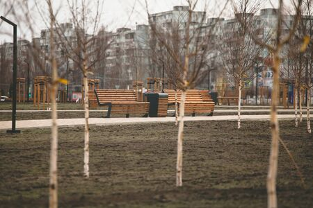 two wooden benches stand in the Park. 스톡 콘텐츠