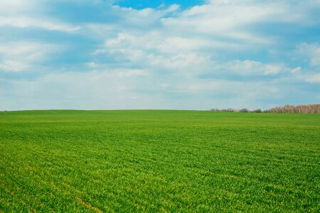 green field with blue sky and clouds.