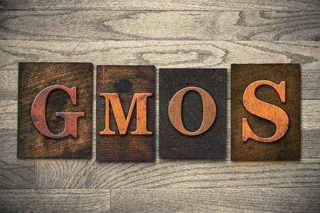 genetically engineered: The word GMOs theme written in vintage, ink stained, wooden letterpress type on a wood grained background.