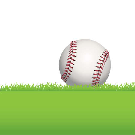 An illustration of a realistic baseball sitting in green grass.  Vector