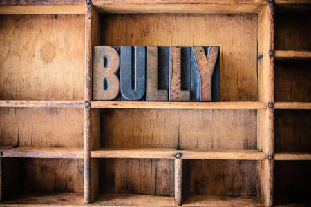 bullying: The word BULLY written in vintage wooden letterpress type in a wooden type drawer.