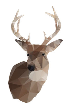 whitetail deer: An abstract design of a whitetail deer buck isolated on white. Vector EPS 10 available. Illustration