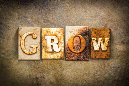 The word GROW written in rusty metal letterpress type on an old aged leather background. Stock Photo