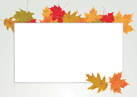 note paper background: Colorful autumn leaves surrounding a border for a white background. Room for copy. Vector EPS 10 available.