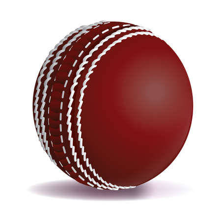 photo realism: A realistic cricket ball illustration isolated on a white background. Vector EPS 10 available. EPS file contains transparencies and gradient mesh.