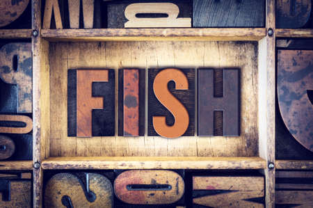 fish type: The word Fish written in vintage wooden letterpress type.