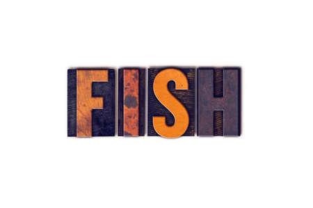 solicit: The word Fish written in isolated vintage wooden letterpress type on a white background.