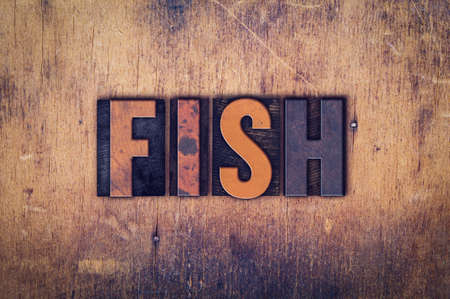 fish type: The word Fish written in dirty vintage letterpress type on a aged wooden background.