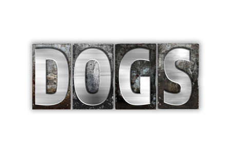 k 9: The word Dogs written in vintage metal letterpress type isolated on a white background.