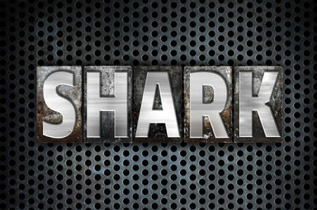 sand shark: The word Shark written in vintage metal letterpress type on a black industrial grid background.