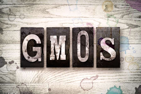 genetically engineered: The word GMOs written in vintage dirty metal letterpress type on a whitewashed wooden background with ink and paint stains.