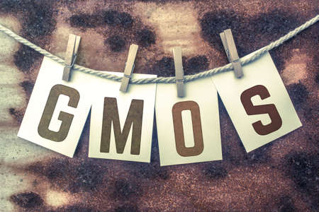 genetically engineered: The word GMOS stamped on cards and pinned to an old piece of twine over a rusted metal background.