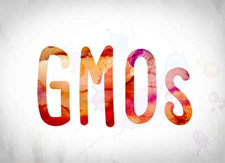 manipulated : alter: The word GMOs written in watercolor washes over a white paper background concept and theme. Stock Photo