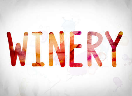 The word Winery written in watercolor washes over a white paper background concept and theme.