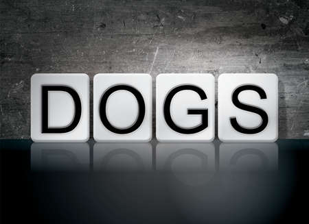 k9: The word Dogs written in white tiles against a dark vintage grunge background. Stock Photo