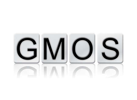 genetically engineered: The word GMOs written in tile letters isolated on a white background.