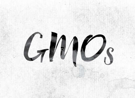 genetically engineered: The word GMOs concept and theme painted in watercolor ink on a white paper.