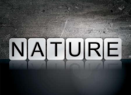 """La palabra """"naturaleza"""" escrita en azulejos blancos contra un fondo oscuro del grunge del vintage. Foto de archivo - 66186874"""