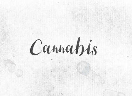 The word Cannabis concept and theme painted in black ink on a watercolor wash background.