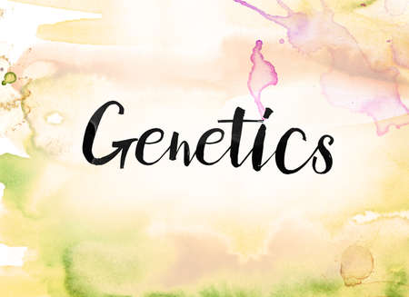 The word Genetics concept and theme written in black ink on a colorful painted watercolor background. Stok Fotoğraf