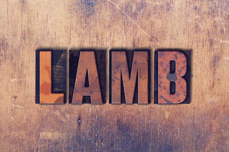 The word Lamb concept and theme written in vintage wooden letterpress type on a grunge background.