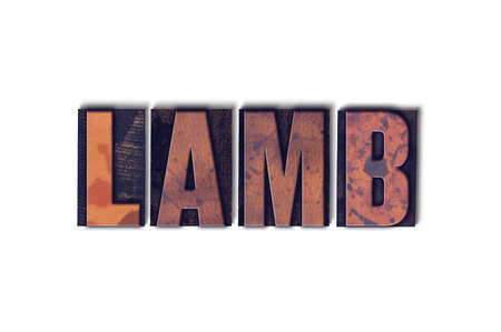 The word Lamb concept and theme written in vintage wooden letterpress type on a white background. Stok Fotoğraf