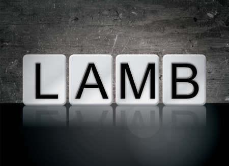 The word Lamb concept and theme written in white tiles on a dark background.