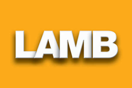 The word Lamb concept written in white type on a colorful background.