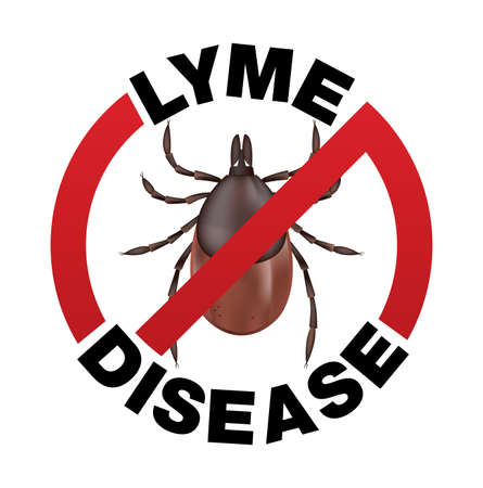 lyme disease: A Lyme Disease tick bite infection icon illustration. Vector EPS 10 available.