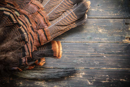 An eastern wild turkey tail feathers and beard on a wooden background.