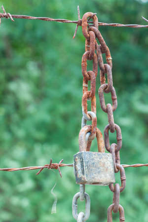 razor wire: rusty chain hang with barbed wire on green background