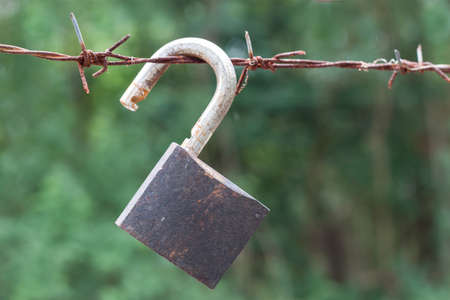 barbed: barbed wire with padlock on green background Stock Photo