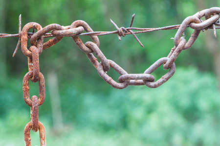 rusty chain: rusty chain hang with barbed wire on green background