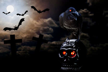 red cross red bird: Crow stand on skull in full moon ( dark Image style ) Stock Photo