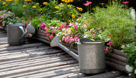 beside: watering can located on bamboo flooring beside flower