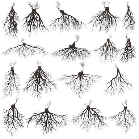 Set van boomwortels met kiemende ledematenwortels silhouet vectorillustratie.