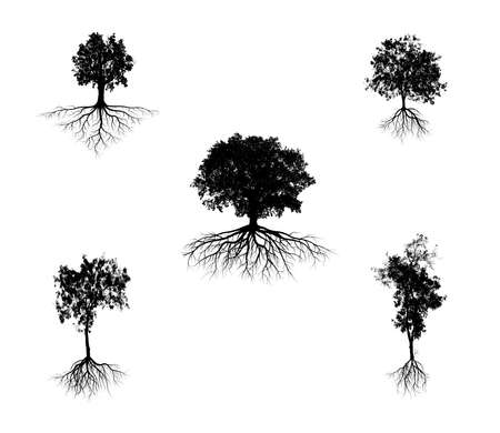 set of big tree silhouettes with root isolated on a white background