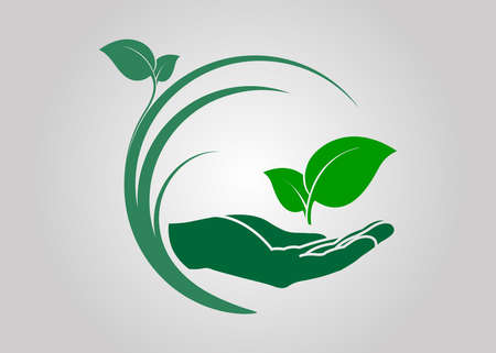 leaf in hand icon. ecological symbols and signs green nature concept, humans and plants icon