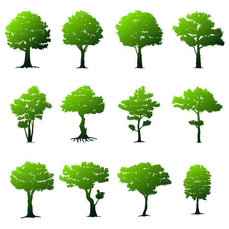 Set of trees on white background. Nature vector illustration. Banque d'images - 103829376