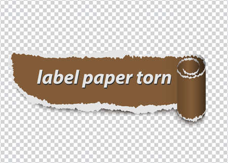torn paper, ripped label on transparent background