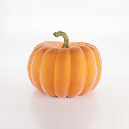 Pumpkin isolated on white background, 3d render Imagens