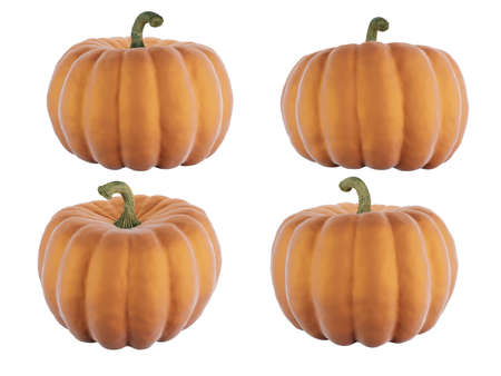 Set of Pumpkin isolated on white background Imagens