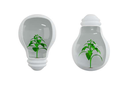 Plants in light bulb, Energy saving eco lamp with green plant and leaves, ecology concept, 3d render