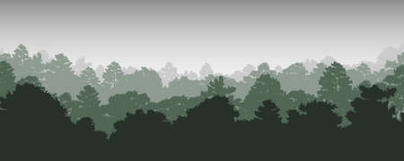 trees silhouettes in forest natural wild background, vector illustration
