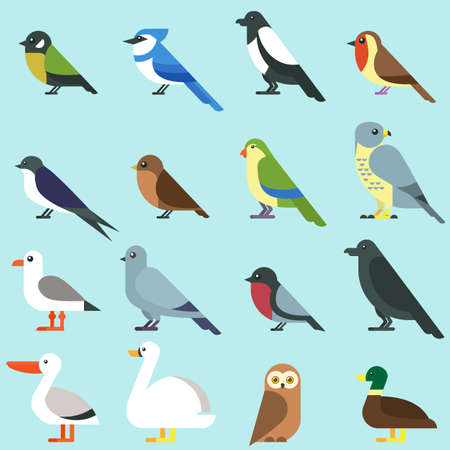bird icon collection. Different city birds Ilustrace
